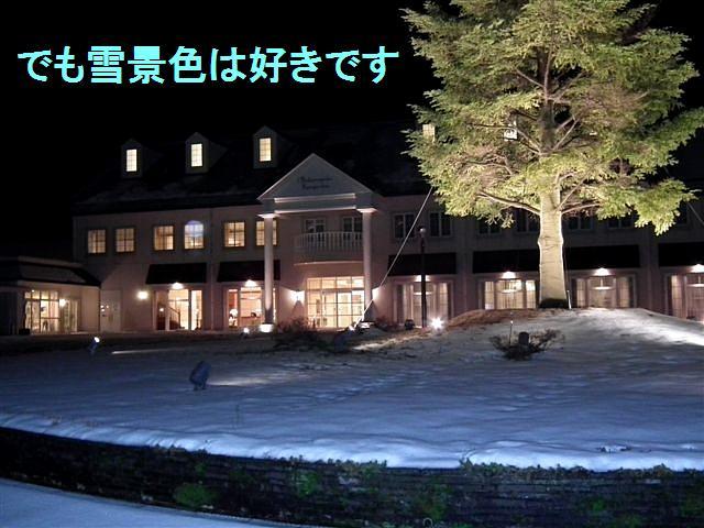 南砺市・平野部初雪 (3)