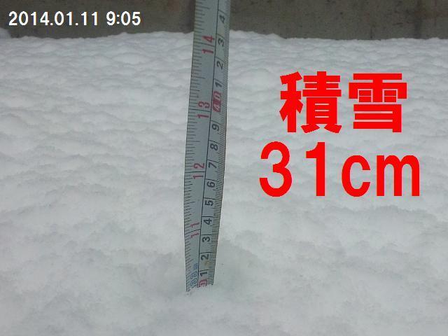 1月平野部初雪2日目の朝