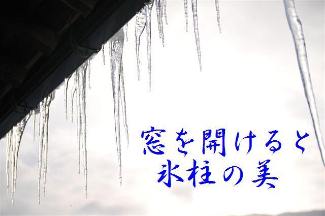 氷柱の美 (1)