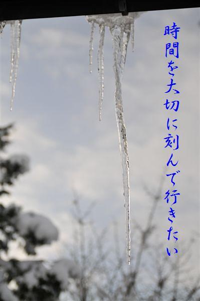 氷柱の美 (2)