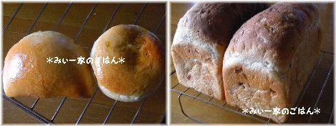 3.16(水)パン