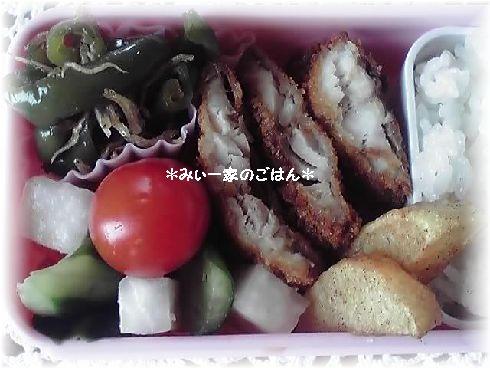 11-09-25_弁当