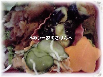 11-10-05_弁当