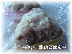 11-10-30_おむすび