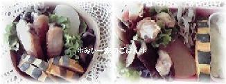 11-11-16_弁当2
