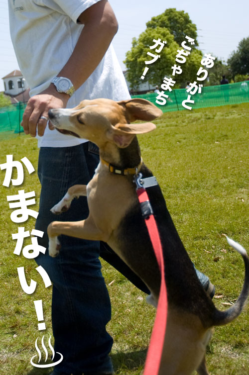 1005013_09.jpg