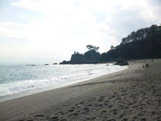 桂浜1_101121