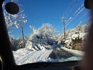 雪道2_110215