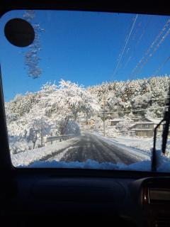 雪道1_110215