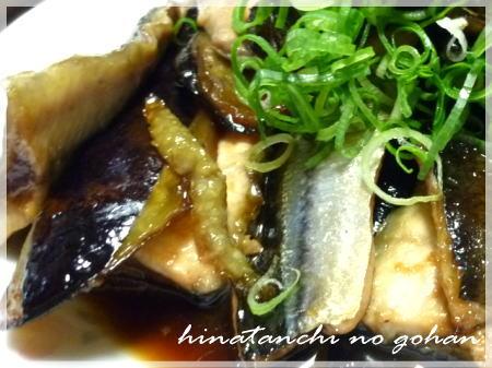20111104さんま茄子アップ