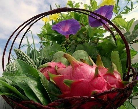 花とドラゴンフル-ツと野菜