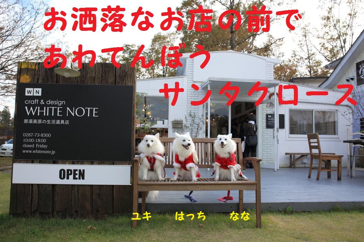 13_201311191959094b1.jpg