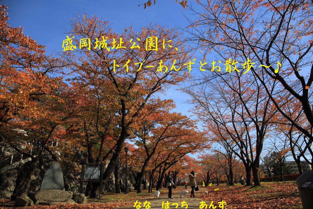 2_201311211912402c5.jpg