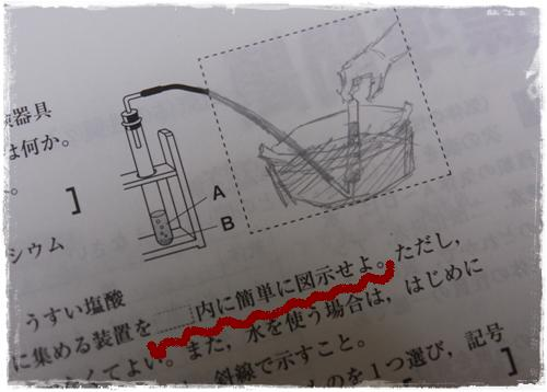 IMG_8402.jpg