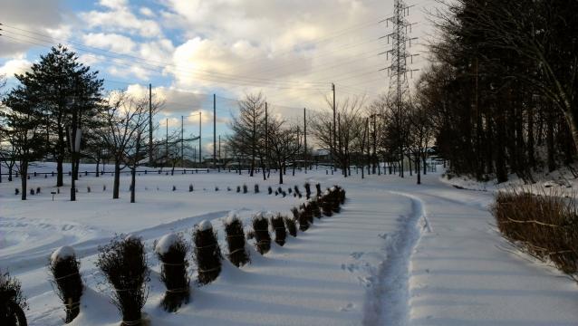 2014-01-20_18-31-28.jpg