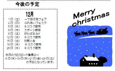 12-5_20121127173201.jpg
