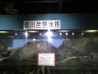 水環境館(生態水槽)