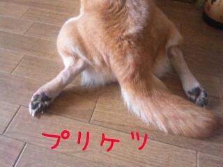 20120101_124856.jpg