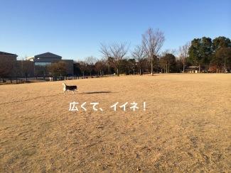 IMG_0342_Fotor.jpg