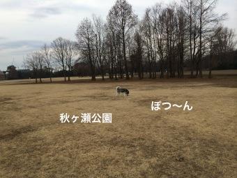 IMG_0452_Fotor.jpg