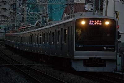 DSC_8636.jpg