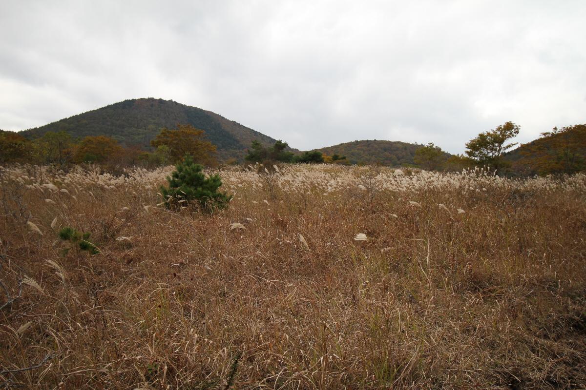 富士山隠れスポット野尻草原