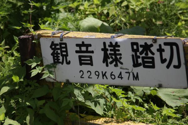 20100615Y04.jpg