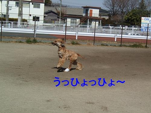 PO20130224_0011.jpg