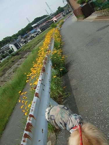 PO20130526_0000.jpg