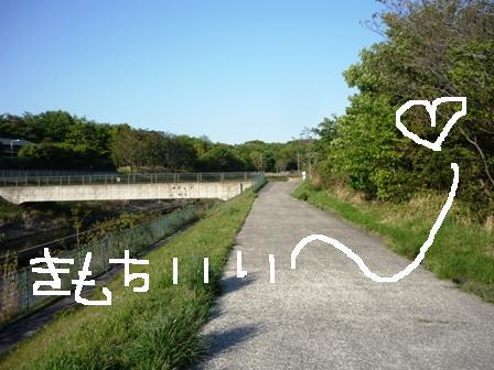 3_20130429215416.jpg