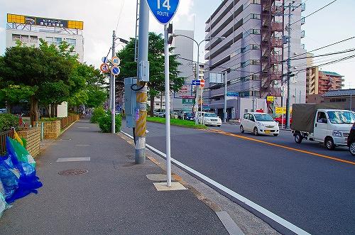 IMGP5474.jpg