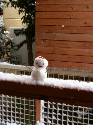 A10.2.12雪ダルマ 005