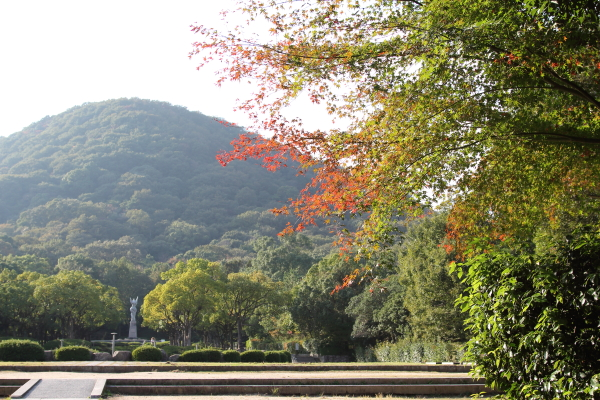 IMG_2388森林公園西宮ブログサイズ
