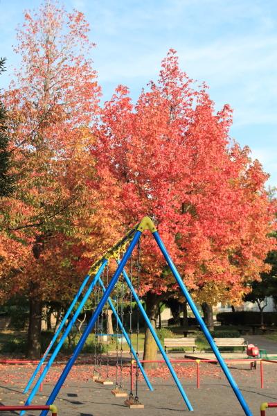 IMG_2310楓公園楓公園