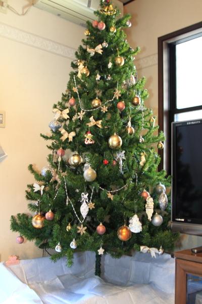 IMG_2982クリスマス ツリー