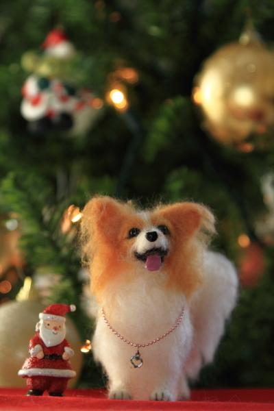 IMG_2894クリスマス ツリークリスマス ツリー