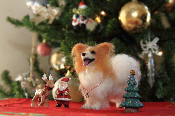 IMG_2902クリスマス ツリークリスマス ツリー