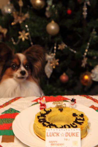 IMG_0016お誕生日ケーキお誕生日ケーキ
