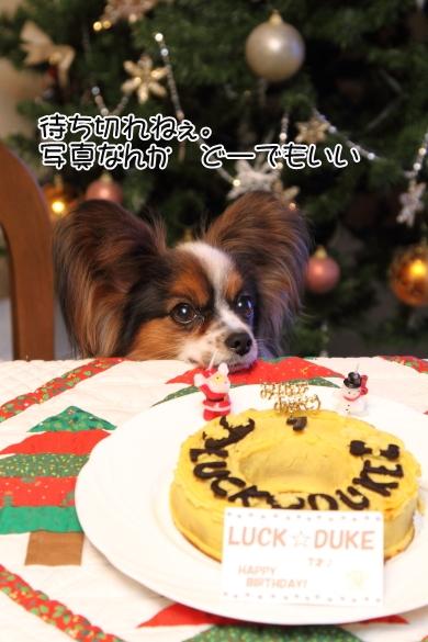 IMG_0019お誕生日ケーキお誕生日ケーキ