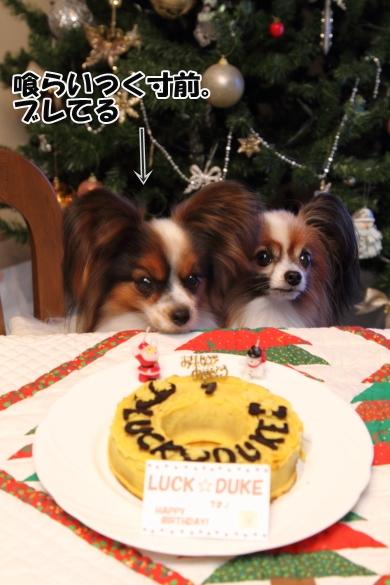 IMG_0021お誕生日ケーキお誕生日ケーキ