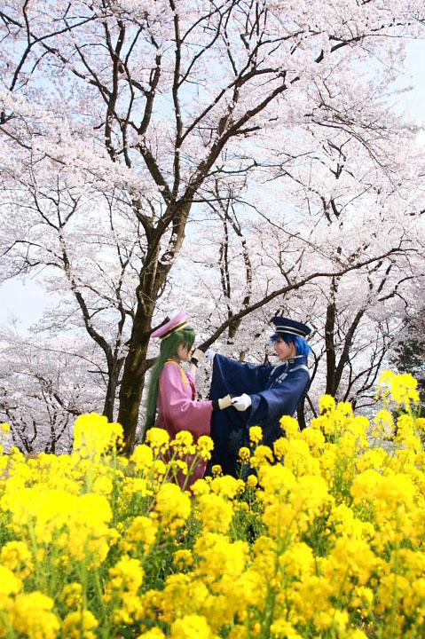 VOCALOID/初音ミク・KAITO/千本桜/コスプレ写真