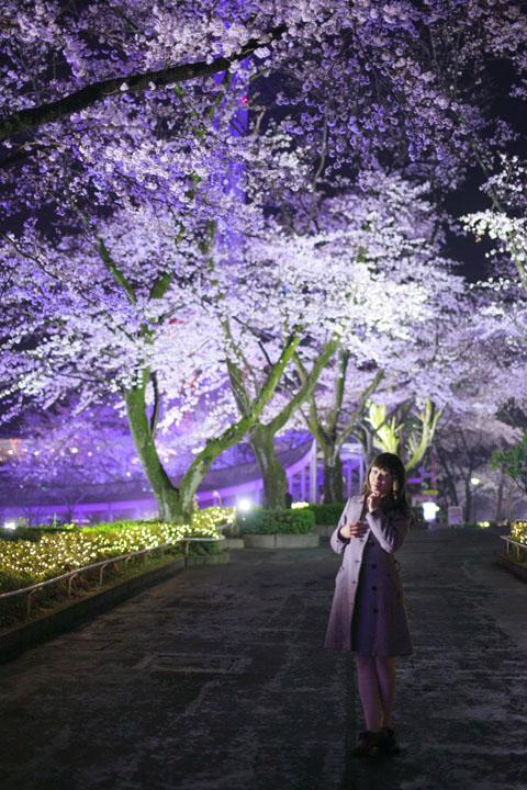 私服ポートレート/夜桜とイルミネーション