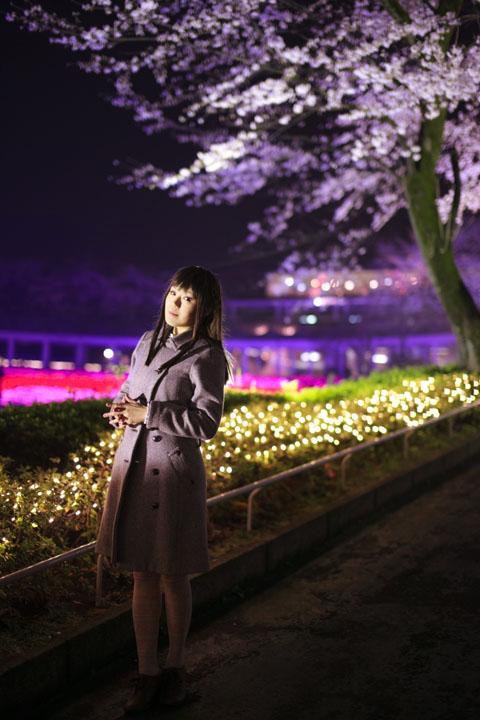私服ポートレイト/夜桜とイルミネーション