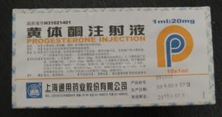 100302_ninshin(10).jpg