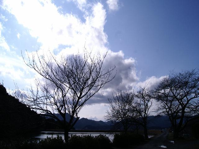 aogaki2 053