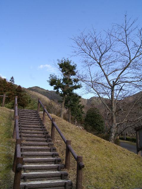 aogaki2 050