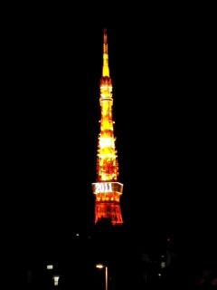 東京タワー2011 夜