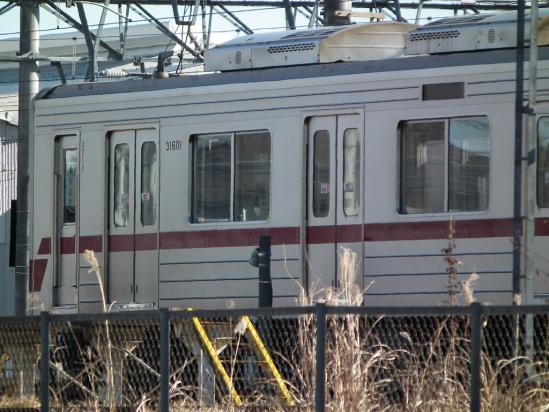 20110131_06.jpg