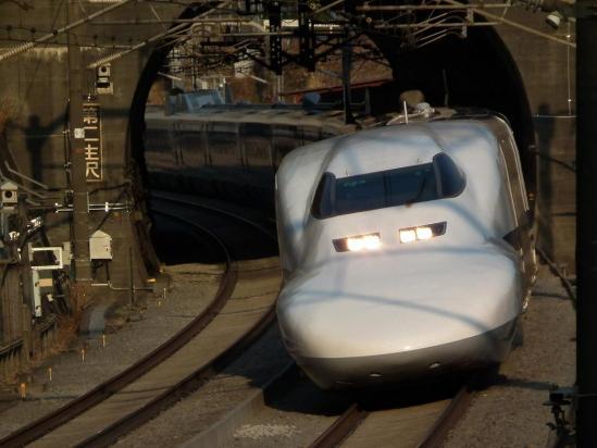 20110204_09.jpg