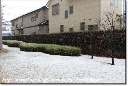 雪の相模原